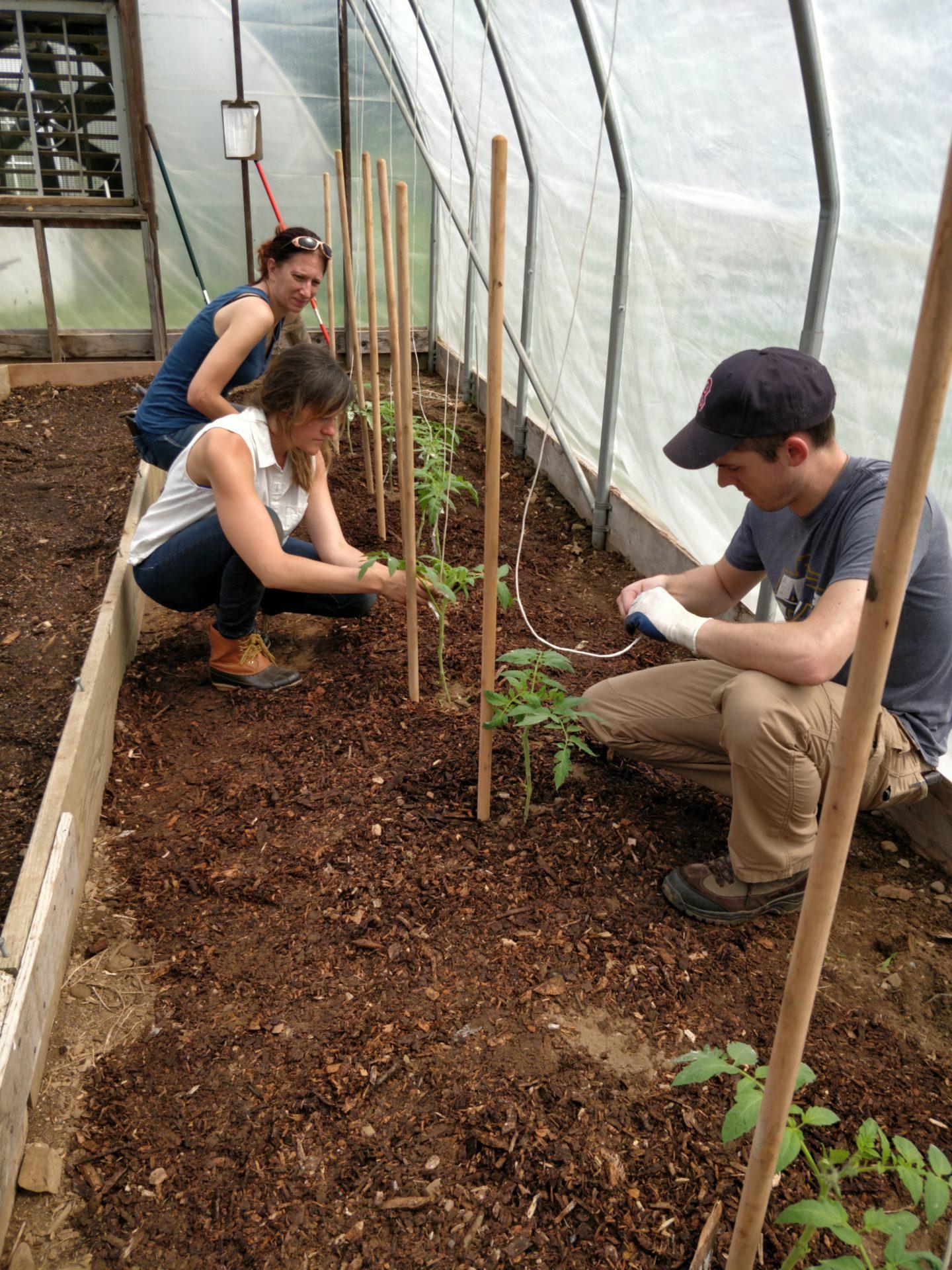 Beginning farmer program at Countryside