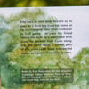 Maestro's Towpath Tale (back)