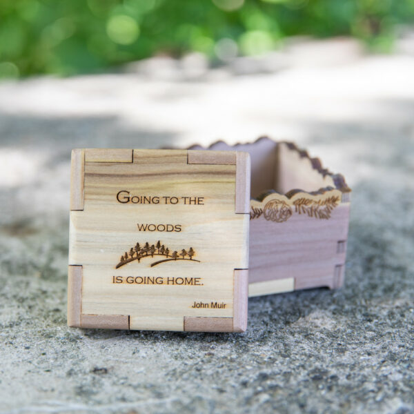 """WYTM Quote Box: """"Going to the woods..."""""""