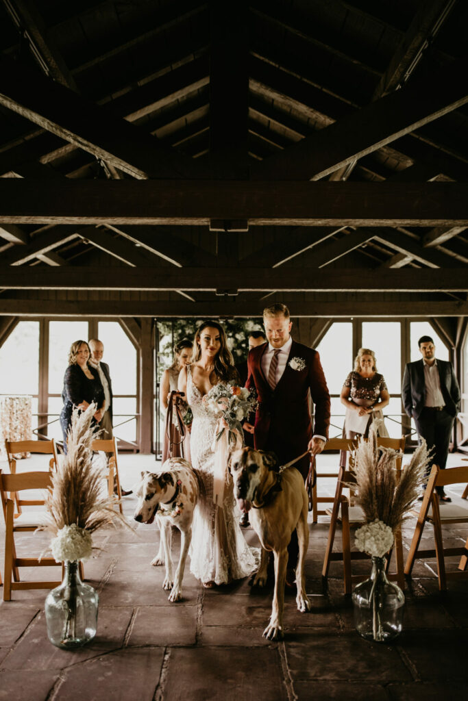 Couple walks up aisle of their wedding ceremony escorted by their two great danes