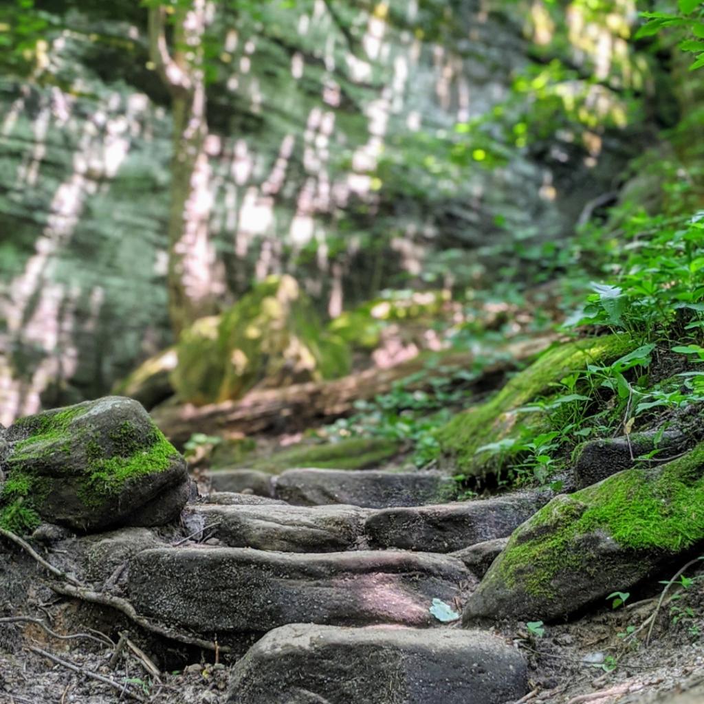 Close up of rock steps on Ledges trail
