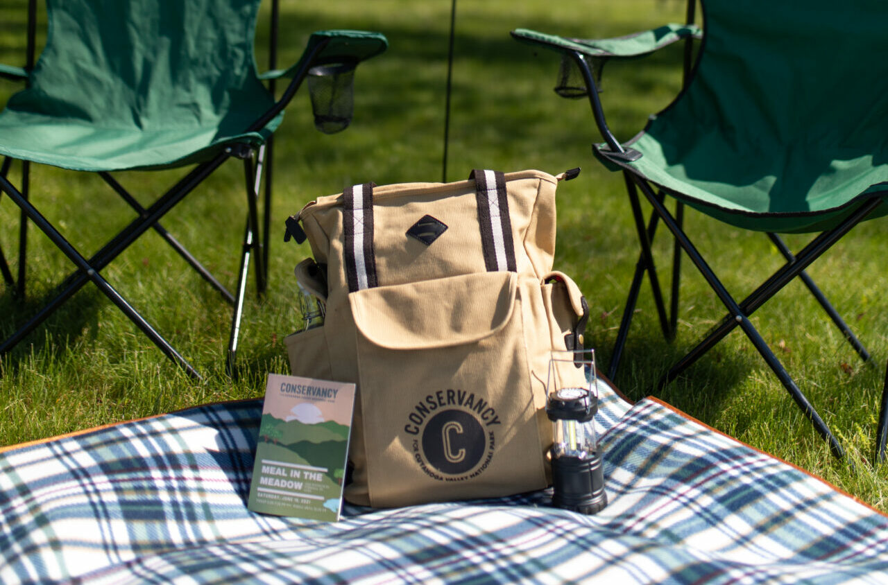 Meal in the Meadow picnic items