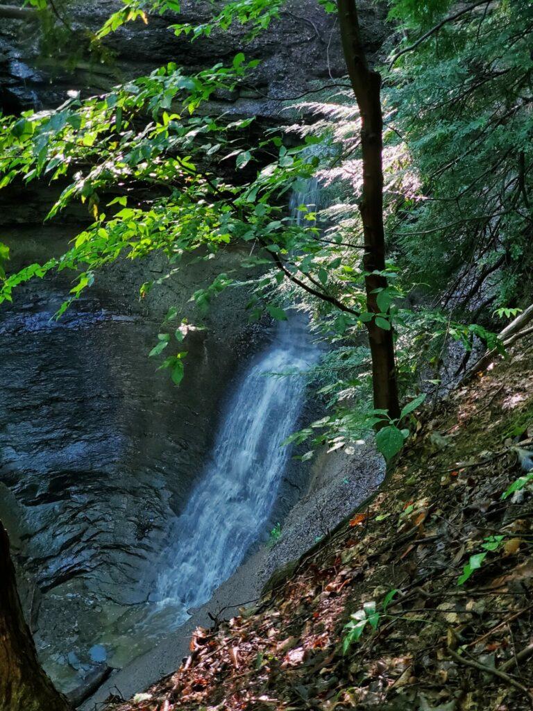 Photo of Alexander Falls
