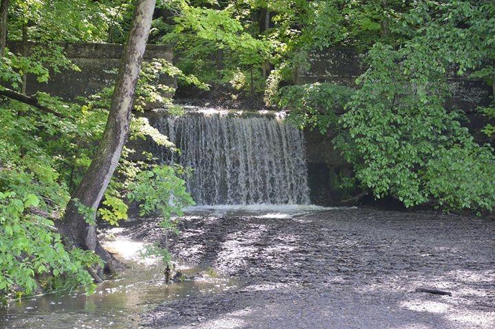 Mudcatcher falls in spring or summer